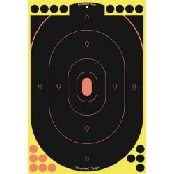 Shoot-N-C 12x18 Slhtt Tgt (Per 100) BIRCHWOOD-CASEY