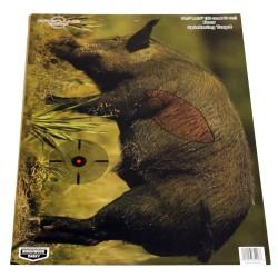 PREGAME 16.5x24 Boar Target3 targets BIRCHWOOD-CASEY