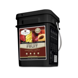 Frrezed Dried Fruit - 152 Servings WISE-FOODS